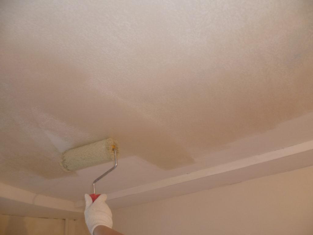 потолок из гипсокартона как красить